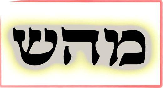 Image result for מ.ה.ש