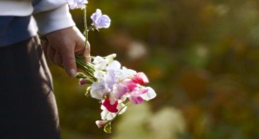 תמצית פרחי באך מספר 39- רסקיו - RESCUE
