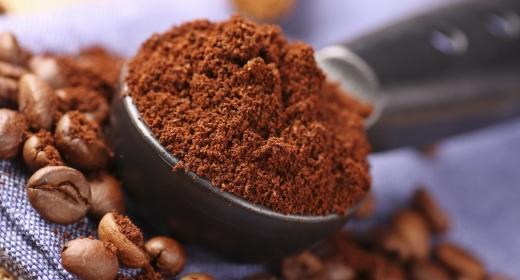 קפה ערבי (Caffea arabica)
