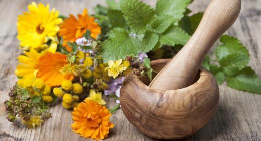 צמחי מרפא סיניים לטיפול בפוריות האישה