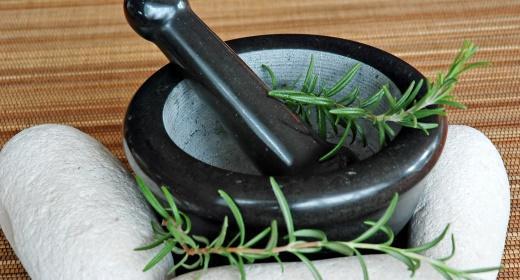 רוזמרין רפואי – צמח מרפא בעל יתרונות רבים