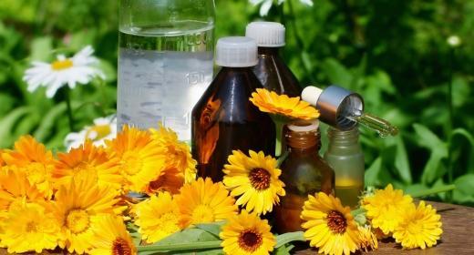 הומאופתיה – טיפול טבעי לעזרה ראשונה
