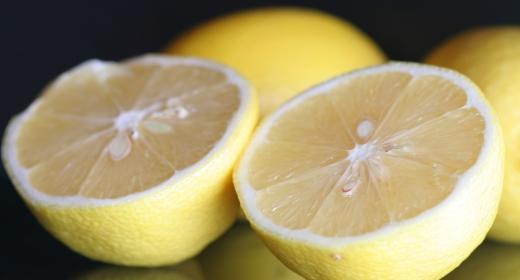 לימון (Citrus limon)