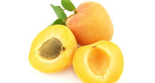 מישמש (prunus armeniaca)