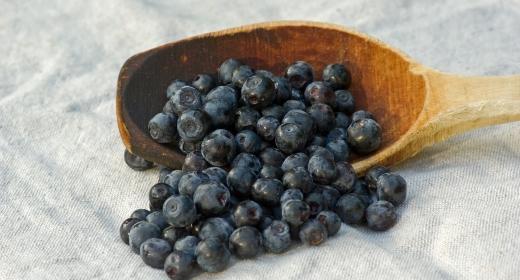 אוכמניות(vaccinium myrtillus)