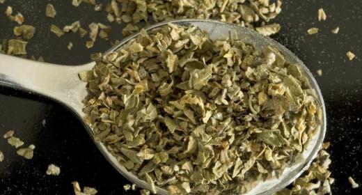 אורגנו/אזובית פשוטה (origanum vulgaris)