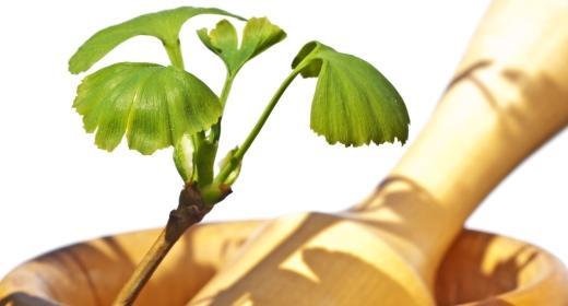 חומו של הקיץ והשפעתו על גופנו - צמחים מחזקים