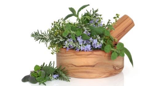 צמחי מרפא - להתגבר על כאבי מפרקים