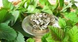 צמחי מרפא- טיפול תומך בסרטן
