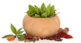 צמחי מרפא ותרופות סבתא למחלות חורף
