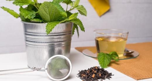 צמחי מרפא וחליטות לחרדות ושיפור מצב הרוח