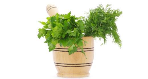צמחי מרפא ומזונות-על בגינת הירק